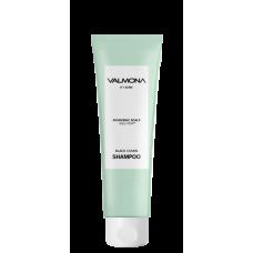 Шампунь для волос EVAS  АЮРВЕДА  (увлажнение )Ayurvedic Scalp Solution Black Cumin Shampoo, 100 мл